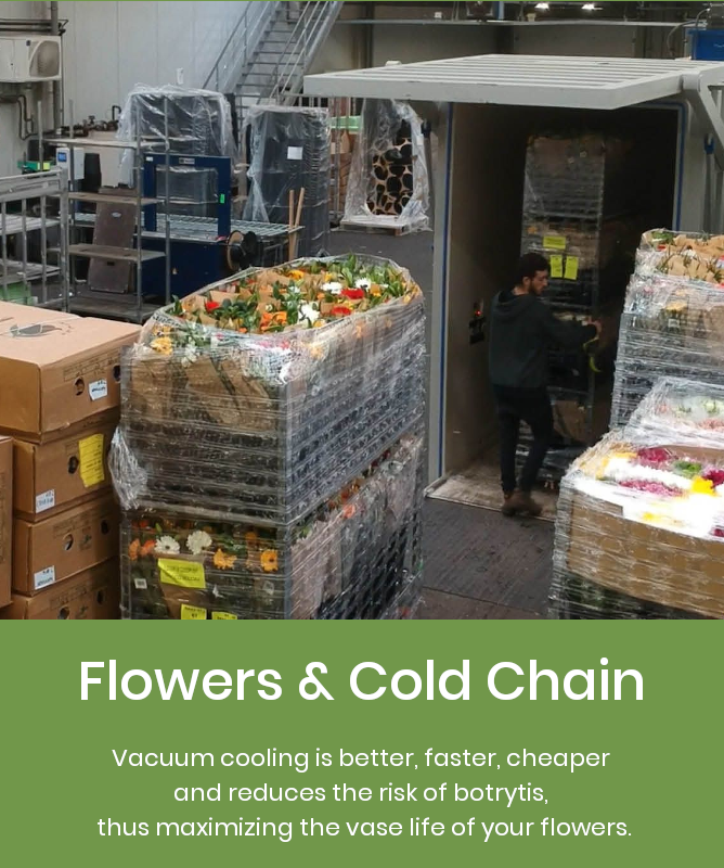 Flower Cold Chain management control with vacuum cooling