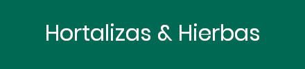 Enfriadores de vacío para Hortalizas & Hierbas